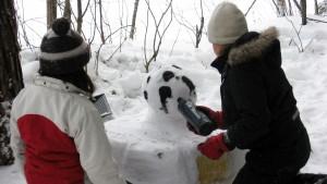 luontokoulu-ohjelma-talvenTaikaa-2